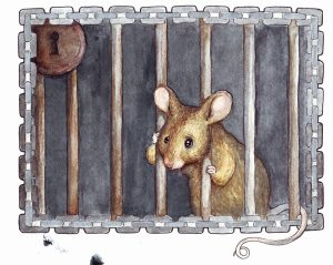Mouse_in_cage_by_Fenster